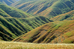 Grassy hills at center of Santa Rosa Island in Channel Islands National Park, California, AGPix_1714
