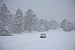 Winter driving at Flagstaff, snowstorm on Lake Mary Road, Coconino National Forest, Flagstaff, Arizona, AGPix_1755