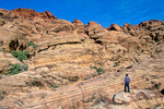 Hiker on Calico Rocks at Red Rock Canyon near Las Vegas, Nevada, USA, AGPix_1767