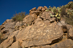 Ancient indian petroglyphs on rocks along Badger Springs Wash Trail at Agua Fria National Monument, Arizona, AGPix_1785