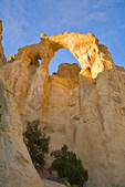 Grosvenor Arch at Grand Staircase-Escalante National Monument, near Cannonville. Utah, USA, AGPix_1804