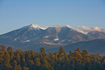 San Francisco Peaks on winter morning, viewed from NAU campus, Flagstaff, Arizona, AGPix_1805