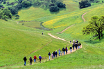 Hikers at Pacheco State Park, guided wildflower tour in April, north of Hollister, California, USA, AGPix_1822