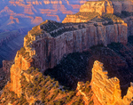 Cape Royal, sunrise on walls of Wotans Throne on North Rim of Grand Canyon National Park, Arizona, AGPix_1835