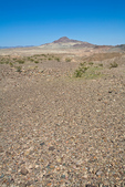 Desert pavement covers surface of Mojave Desert, near Afton Canyon, BLM lands, east of Barstow, California, AGPix_1843