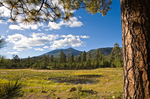 San Francisco Peaks, Freemont Peak, viewed from Schultz Tank at junction of Sunset and Little Elden Trails , Coconino National Forest, Flagstaff, Arizona, AGPix_1852