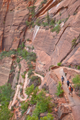 Hikers climb switchbacks on West Rim Trail to Angels Landing Route at Zion National Park, Utah, AGPix_1859