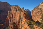 Angels Landing viewed from West Rim Trail at Scouts Lookout, Zion National Park, Utah, AGPix_1860