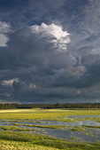 Thunderstorm over Lower Lake Mary, summer monsoon season, Coconino National Forest, Flagstaff, Arizona, AGPix_1880