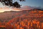 Sunrise at Bryce Amphitheater views from Sunset Point at Bryce Canyon National Park, Utah, AGPix_1894
