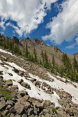 High in the Inner Basin, at 11,200 ft. elevation, tundra vegetation and lingering snowbanks, July 1, below Humphreys Peak, in San Francisco Peaks area of Coconino National Forest near Flagstaff, Arizona, AGPix_1906