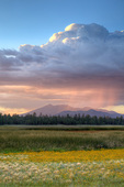 Marshall Lake wetlands on Anderson Mesa with rain clouds and San Francisco Peaks rising in distance, summer evening, Coconino National Forest, south of Flagstaff, Arizona, AGPix_1928NEW