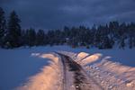 Snowy driveway to Bean North Ranch home, Flagstaff, Arizona, USA, _MG2_10573