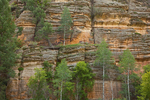 Sandstone cliffs of Walnut Canyon, below Fisher Point, Coconino National Forest, Flagstaff, Arizona, USA, _MG2_16349