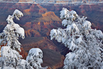 Winter view at Mather Point area on South Rim of Grand Canyon National Park, Arizona, USA, AGPix_1987
