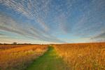 Trail across the tallgrass prairie, a prairie restoration project at Mount St. Francis Prairie, Dubuque, Iowa, AGPix_2004