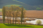 Marsh of Colfiorito, a natural wetland on a Karst Plain in the Central Apennines, east of Foligno, Umbria, Italy, AGPix_2023