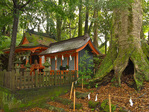 Takahara Kumano-jinja shrine in village of Takahara in the Kii Mountain Range, along route of Kumano Kodo Pilgrimage Route, Nakahechi Route, a UNESCO World Heritage site, on the Kii Peninsula, Wakayama Prefecture, Japan, AGPix_2036
