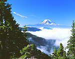 Goat Rocks Wilderness fog & Mt. Adams, Washington.
