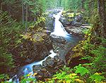 Silver Falls at Mount Rainier National Park, Washington