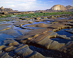 Tide-sculpted sandstone designs at Seal Rock State Recreation Site, Oregon