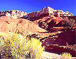 Sandstone formations & rabbit brush in Capitol Reef National Park, Utah