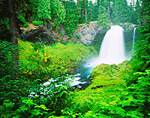 Sahalie Falls & McKenzie River in the Cascade Mountain Range of Oregon