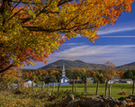 New England village in fall with sugar maple leaves and church steeple