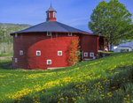 Round barn built 1899, first in vermont, for 100 jersey cows