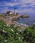 Portland Head Light, rocky cliffs and roses.