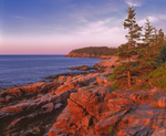First light on rocky Atlantic coastline with Otter Cliffs in background, Acadia National Park