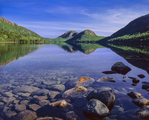 The Bubbles and reflections in Jorden Pond Acadia National Park