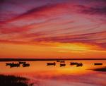 Dawn color and reflections, Nauset Marsh Bay, Cape Cod National Seashore