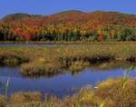 McAllister Pond with Sugarloaf Mtn (left) Strawberry Hill (right) in fall. Hazens Notch area