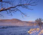 Deerfield River, first light after snow storm, ash tree branch