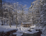 Willard Brook, covered footbridge and snow covered trees, Willard Bk State Forest