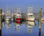 Sport fishing boats, reflections with gull on pylon.
