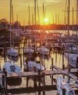 Sunset, sailboats at dock along Spa Creek.