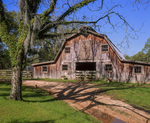 Barn with corral and tree.