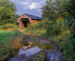Gates Farm Covered Bridge and reflection in puddle on country dirt road, with wildflowers
