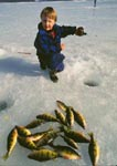 Three-year old boy ice fishing for yellow perch