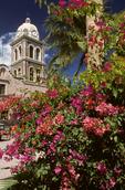 Mission Nuestra Senora de Loreto & blooming bougainvillea.