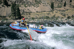 Rafters descending Tappen Falls (Class IV) on the Middle Fork of the Salmon River, ID