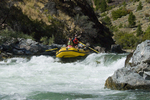 Rafters running Tappan Falls on the Middle Fork of the Salmon River ID