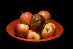 concept - bad apple