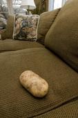 conceptual image - couch potato