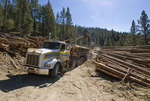 Loading logging truck on private land in central Idaho
