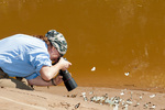 Woman photographing tropical butterflies on the banks of the Tambopata River in the Tambopata National Reserve Peru