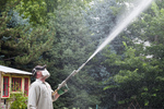 Pesticide applicator applying insecticides to trees in Boise, Idaho (note spray falling on bare skin on face and neck)