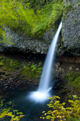 Ponytail Falls in the Columbia River Gorge National Scenic Area, Oregon